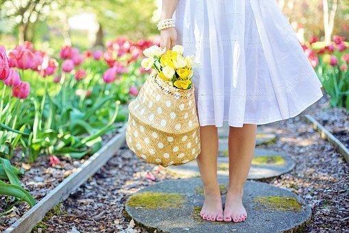 spring-2298279__340.jpg