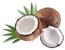 ウルトラ速攻法で椰子の実割り.jpg