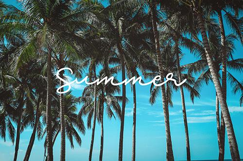 IMG_8058_summer.jpg